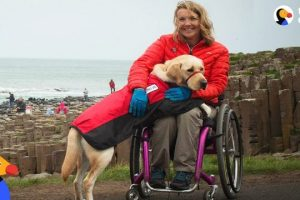 Service-Dog-Inspires-Injured-Woman-To-Live-Life-To-The-Fullest-The-Dodo