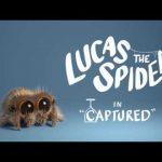 Lucas the Spider – Captured