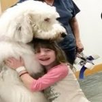Huge Dog Helps Sick Kids Feel Better