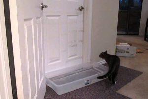 Mulder-opening-doors