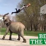 Best Videos of the Week – People Are Awesome