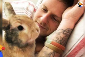 Amazing Rabbit Changes Man's Mind About Animals