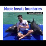 Dolphins and Elephants Love Music