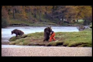 Nasty Encounter With a Bear
