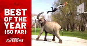 People are Awesome – Best Videos of the Year (So Far)