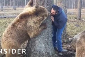 How This Couple Became Parents to Bears in Need