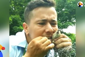 Mailman Rescues Trapped Chipmunk