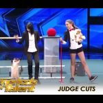 The Most TALENTED Cats You Won't Believe It!