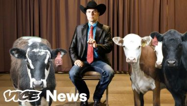 What The Heck Are Livestock Auctioneers Actually Saying?