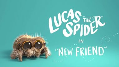 New Friend – Lucas The Spider