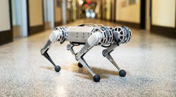 Backflipping Robot Mini Cheetah