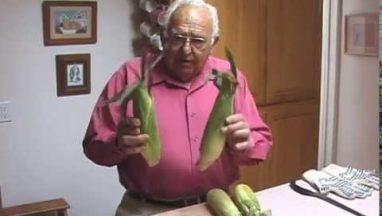Shucking Corn the Easy Way