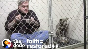 Vet Eats in Rescue Dog's Cage to Make Her Feel Safe