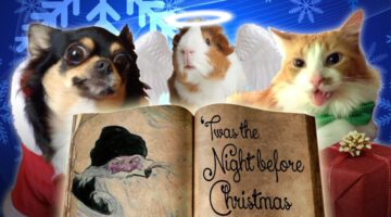 Pets Read Twas The Night Before Christmas